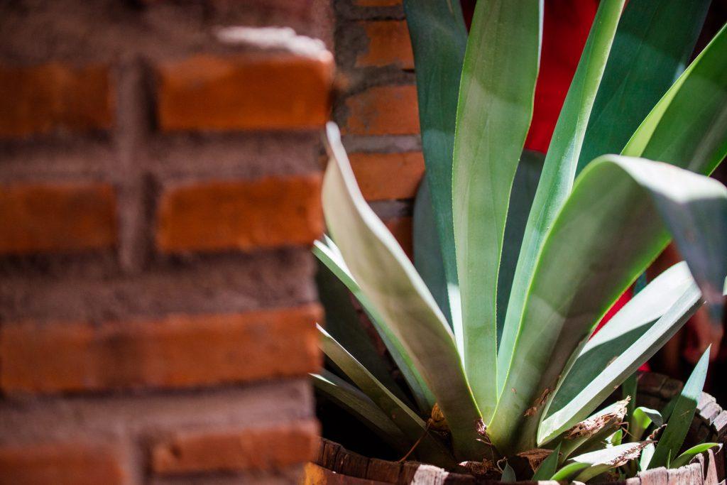 Fotografia Bautizo San Luis Potosi Fotos Foos De Bautizo 37